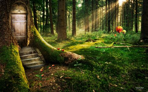 enchanted forest wallpapers hd wallpapers id