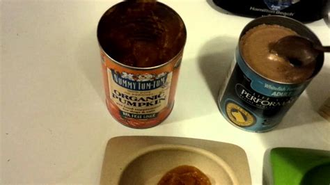 healthy cat food preparation   pure canned