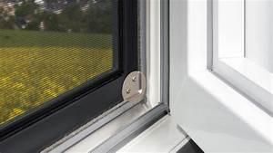 Fliegen Im Fensterrahmen : insektenschutz bachmann fenster und t ren gmbh krostitz ~ Buech-reservation.com Haus und Dekorationen