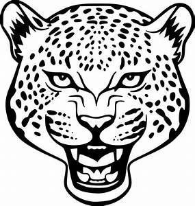 Dessin Jaguar Facile : coloriage tete de jaguar imprimer ~ Maxctalentgroup.com Avis de Voitures
