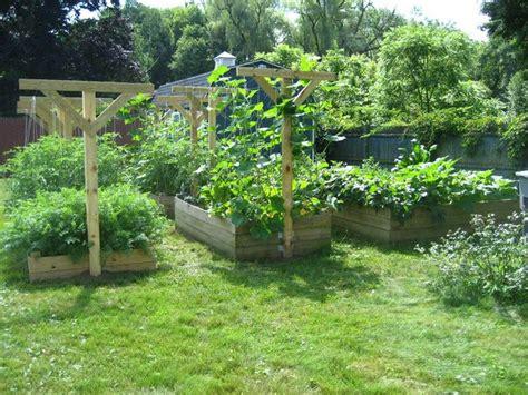 garden trellis ideas photograph garden trellis i
