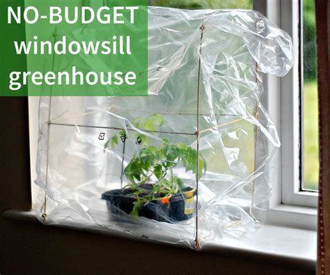 40 Diy Indoor (inhouse) Greenhouse Projects