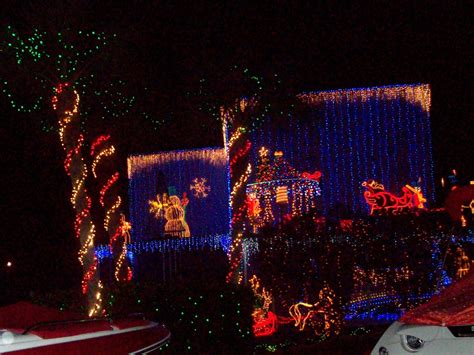pictures of mt dora christmas lights renting live dogs