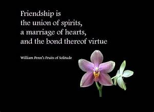 Day Celebration... Friendship Day Good Quotes