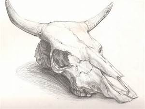 Cow Skull By Queen