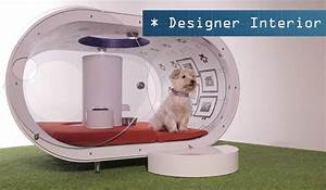 samsung dream doghouse high tech house for our furry With smart dog house