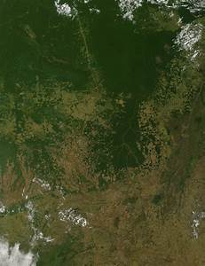 NASA - Growth in Amazon Cropland May Impact Climate and ...