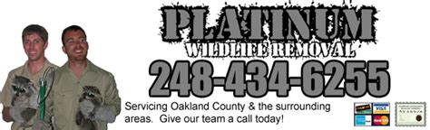 West Bloomfield Wildlife Removal Pest Animal Control