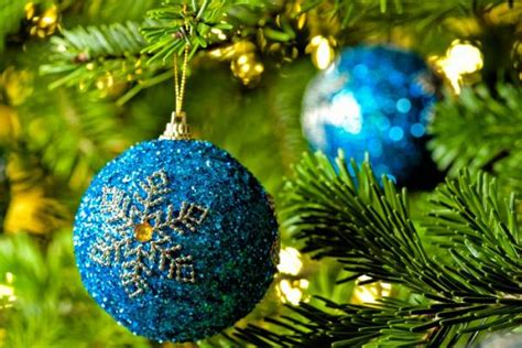 what s the best christmas tree what s the best real tree stuff co nz