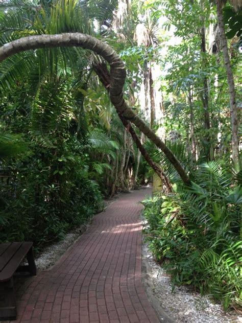 Jungle Garden Sarasota - sarasota jungle gardens sarasota fl ta and