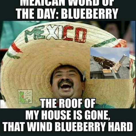 Mexican Memes 31 Mexican Word Of The Day Memes That Are In Every