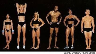Athletes Bodies Superhero Olympians Female Athletic Athlete