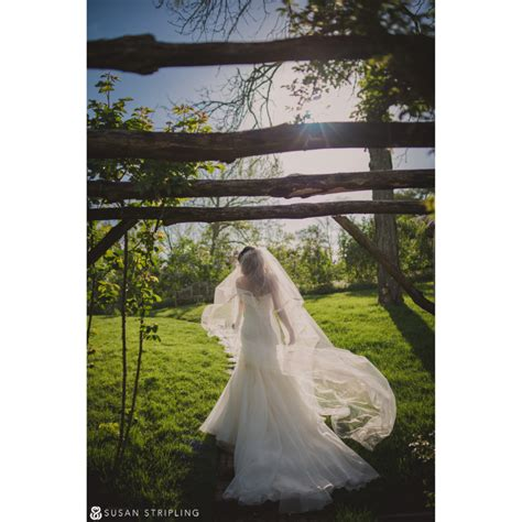 Westbury Gardens Wedding Reception susan stripling photography wedding at westbury