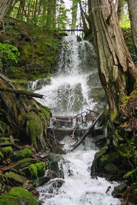 trail elk wa boundary dam mill pond goan hike
