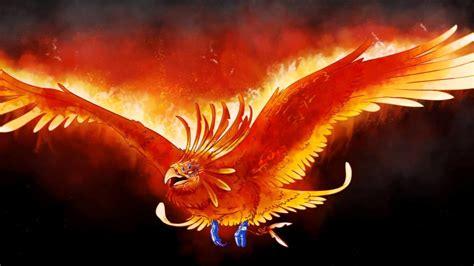 Phoenix Bird Wallpapers (80+ images)