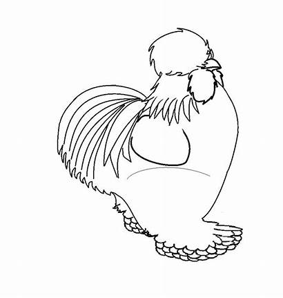 Silkie Chicken Coloring Chickens Lineart Egg Rolldown