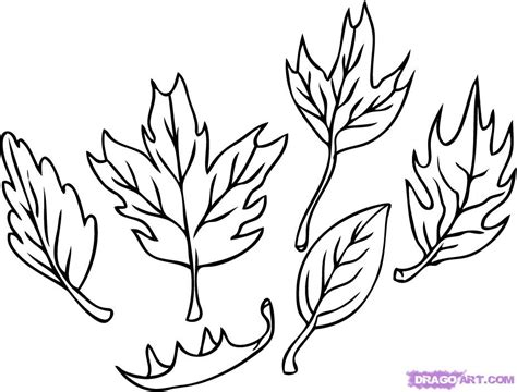draw leaves step  step trees pop culture