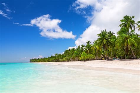 Home Travel Saona Island