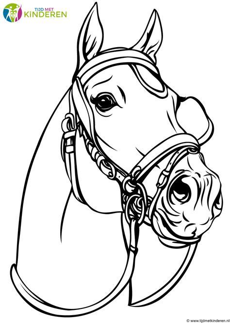 Kleurplaat Aarend Hoofd by Kleurplaat Paard Hoofd