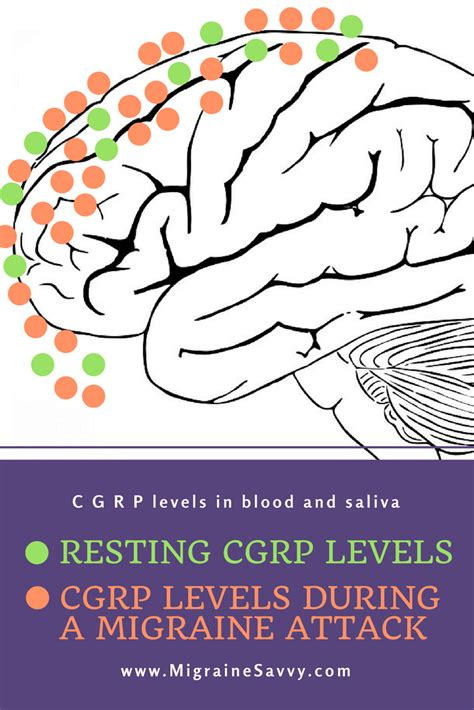 Authorization will be issued for 6 months. CGRP Drugs for Migraine
