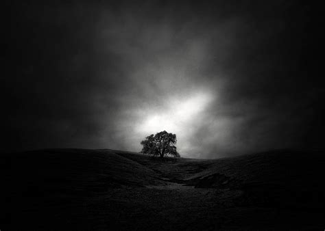slices  silence quiet black  white infrared landscapes