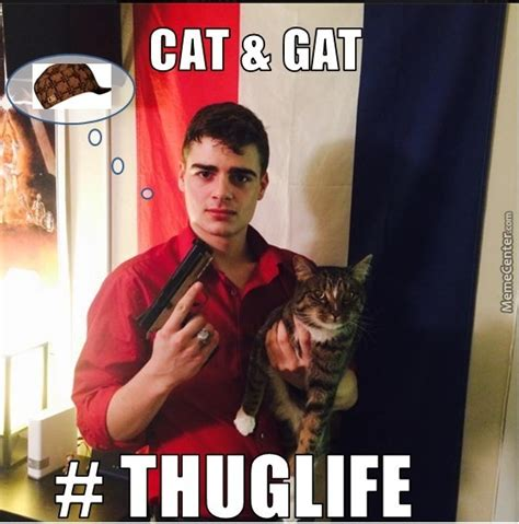 Gat Meme - cat n the gat by dr suess by ovonelled meme center