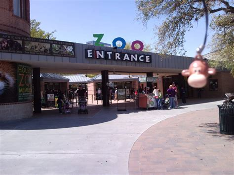 image gallery houston zoo entrance fees