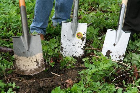 Garten Umgraben Mit Maschine (3 Geräte Zum Boden Auflockern