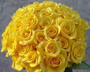 Yellow Roses Wedding Bouquets Ideas   Wedding-Decorations
