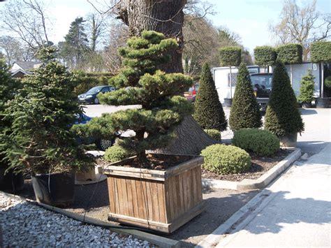 landscape gardeners wirral