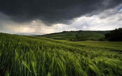 Rain Nature Landscape Wallpapers Coming 1440