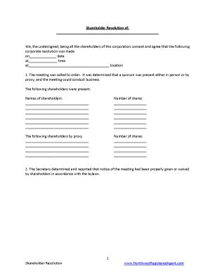 sole director resolutions initial meeting template