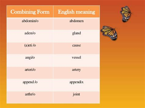 combining forms for ear medical terminology combining forms