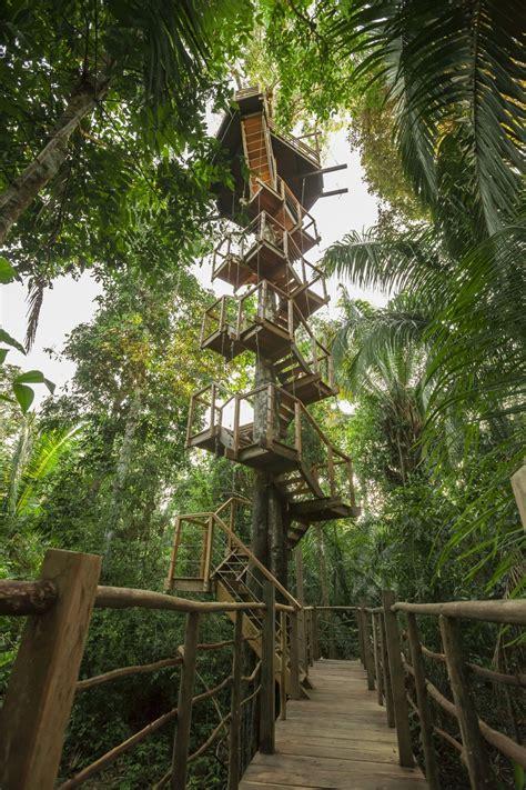 lodge treehouse amazon rainforest iquitos honeymoon glamping tree jungle peru romantic destination peruvian hotels rainforestcruises lodges destinations south america canopy