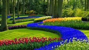 17 Beautiful Garden Wallpapers for Desktop