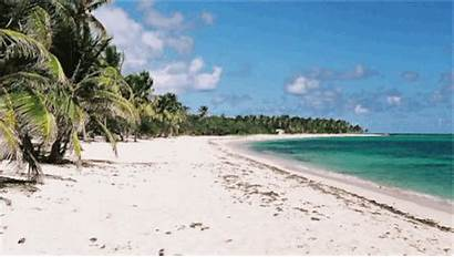Beaches Sand Vacation Summer Caribbean Hawaiian Poop