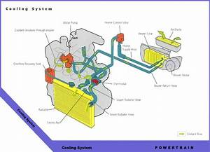2014 Toyota Tacoma Wiring Diagram Parts  U2022 Downloaddescargar Com