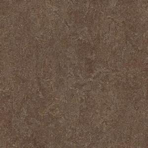 Forbo Click Vinyl : forbo marmoleum click cinch loc 12 x 12 walnut ~ Frokenaadalensverden.com Haus und Dekorationen