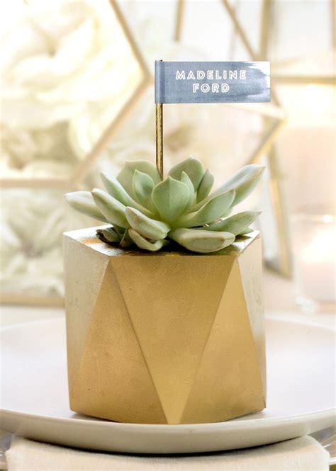 mini flower pots succulent favors wedding favors mini pots