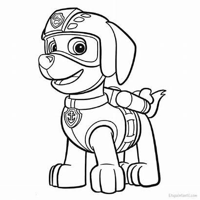 Colorear Canina Patrulla Zuma Dibujos Dibujo Infantil