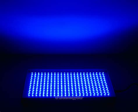 16w 230pcs blue led grow light panel 100v 240v 50 60hz