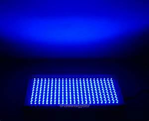 Light And Blue : 16w 230pcs blue led grow light panel 100v 240v 50 60hz ac adaptor greenergystar grid tie ~ Bigdaddyawards.com Haus und Dekorationen