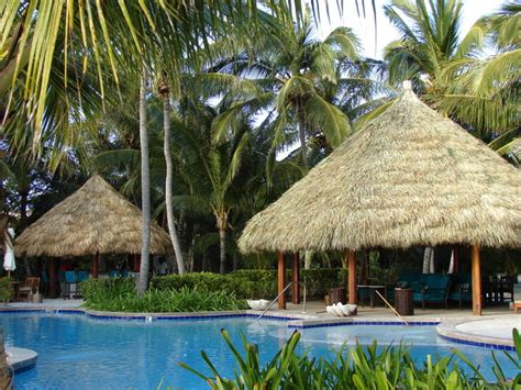 tropical tiki huts poolside tiki hut cabanas