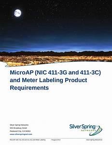 Itron Nic411