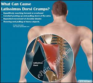 10 Unbelievable Facts About Muscle Spasms Near Gallbladder ...