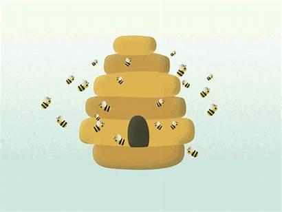 Beehive Bee Animation Dribbble Looping Wiggle Adobe