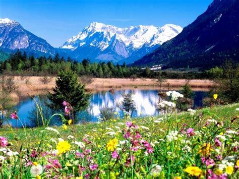 le  beau paysage fleuri voyez les meilleures images