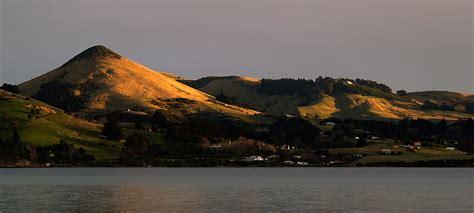 Dunedin And The Otago Peninsula Destination Guide Triporati