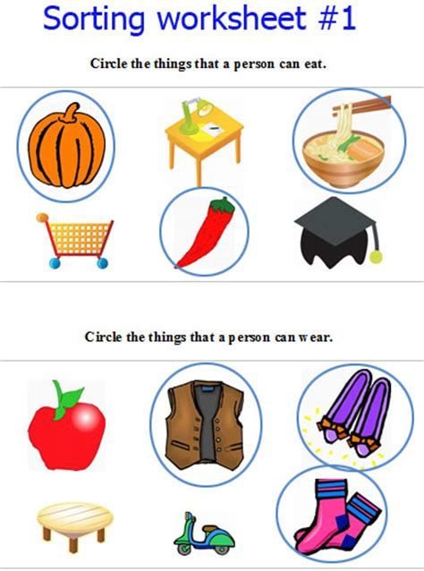 Sorting Kindergarten Worksheets  Kindergarten Sorting And Categorizing Printable Worksheets