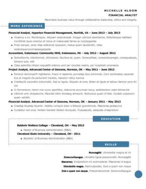 Definition Of Chronological Resume by Chronological Resume Definition Format Layout 103